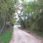 Buck Lane Entrance