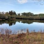 Dickson 471 - Pond