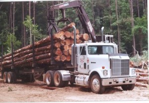 Log Truck loaded with logs
