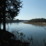 Twin Rivers Preserve Altamaha River