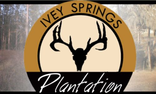 Ivey Springs Plantation, Jefferson County, GA