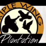Triple Wing Plantation in Candler County, GA