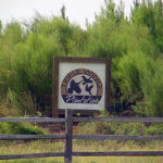 Triple Wing Plantation Sign with Logo in Candler County Georgia