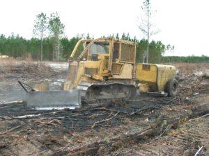 V Blade Bulldozer Planting Trees